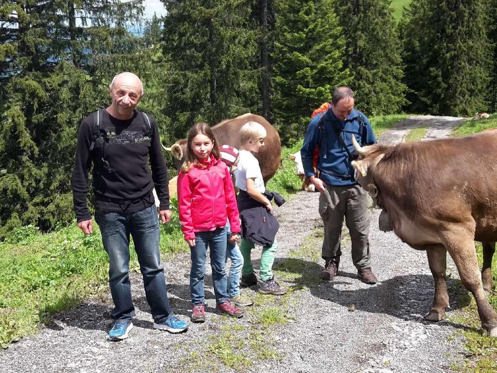 Wandern mit den Familien in Vorarlberg